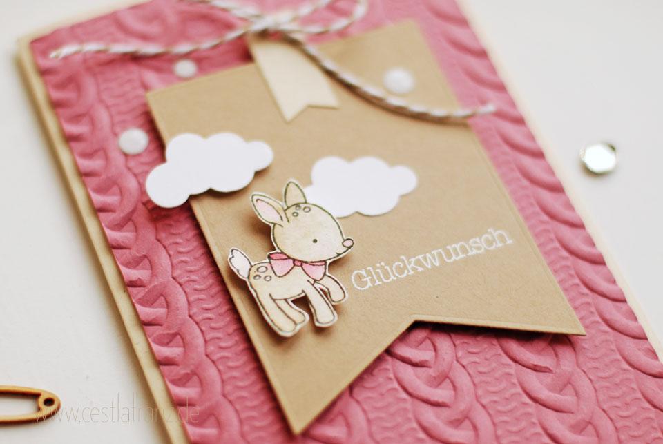 Babykarte Zum Nachwuchs Zopfmuster Stampin Up